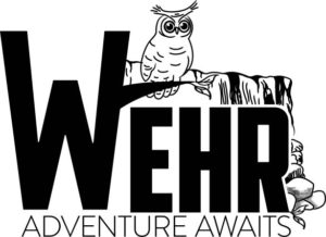 owl screen logo thumbnail