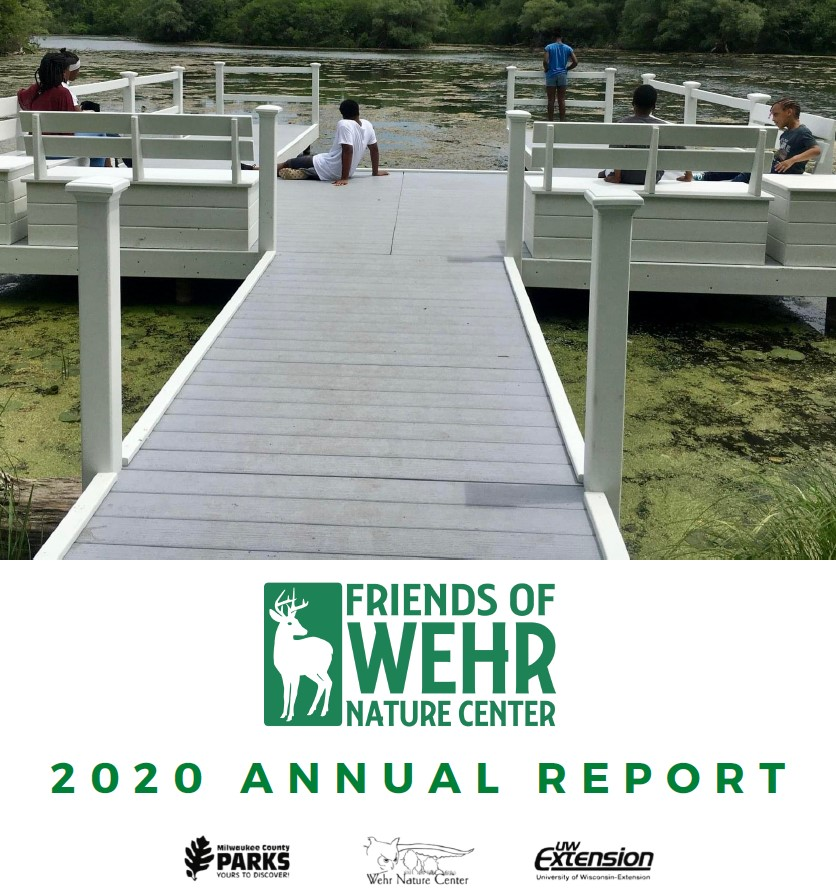 Click image for Annual Report